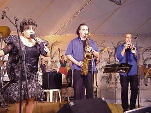 sandra hall & gnola blues band