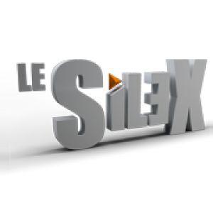 Le Silex