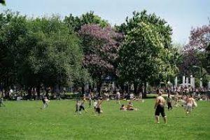 Volks Park Mainz
