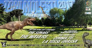 Toni Molesti Festival