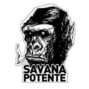 SAVANA POTENTE