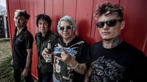UK SUBS - PUNK ROCK